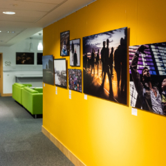 Photography works on yellow walls